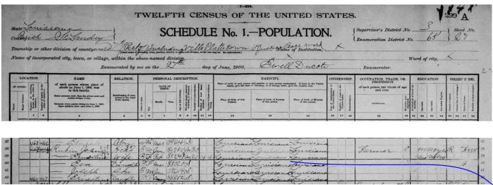 eva rubin 1900 census original